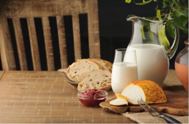 Sữa Bio cho mèo con